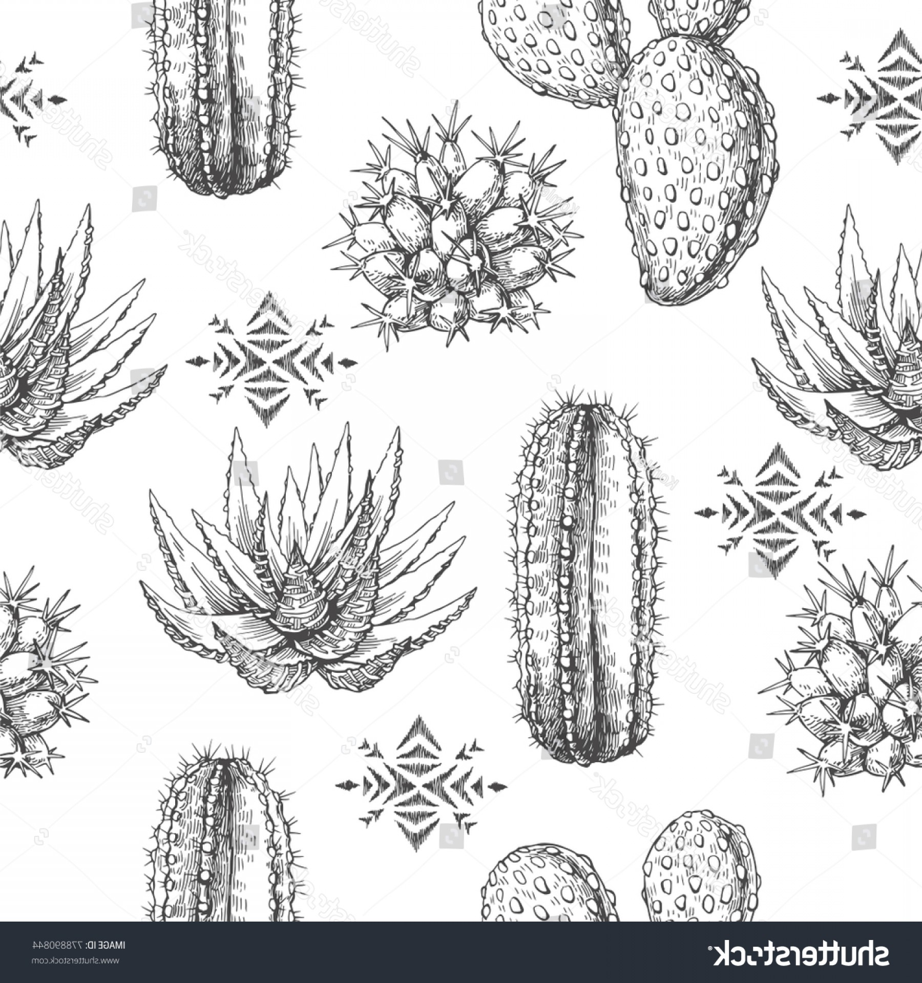 Aztec Cactus Vector: Vector Seamless Pattern Houseplants Aztec Ornament