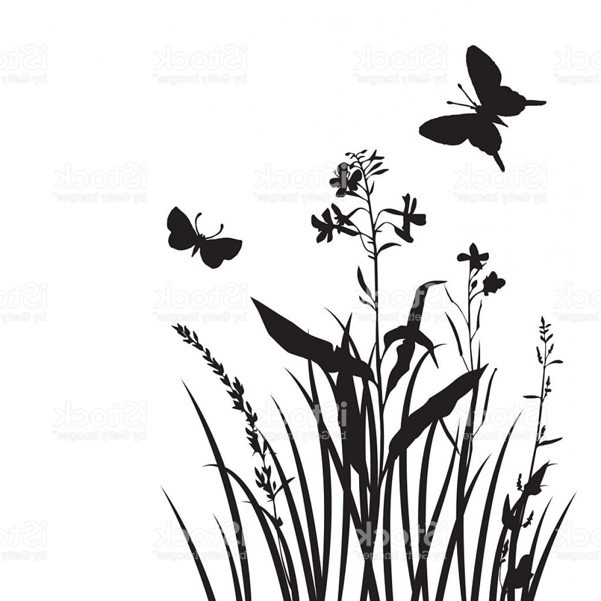 Butter Fly And Flower Vector Black And White: Vector Silhouettes Of Flowers And Grass With Butterflies Gm