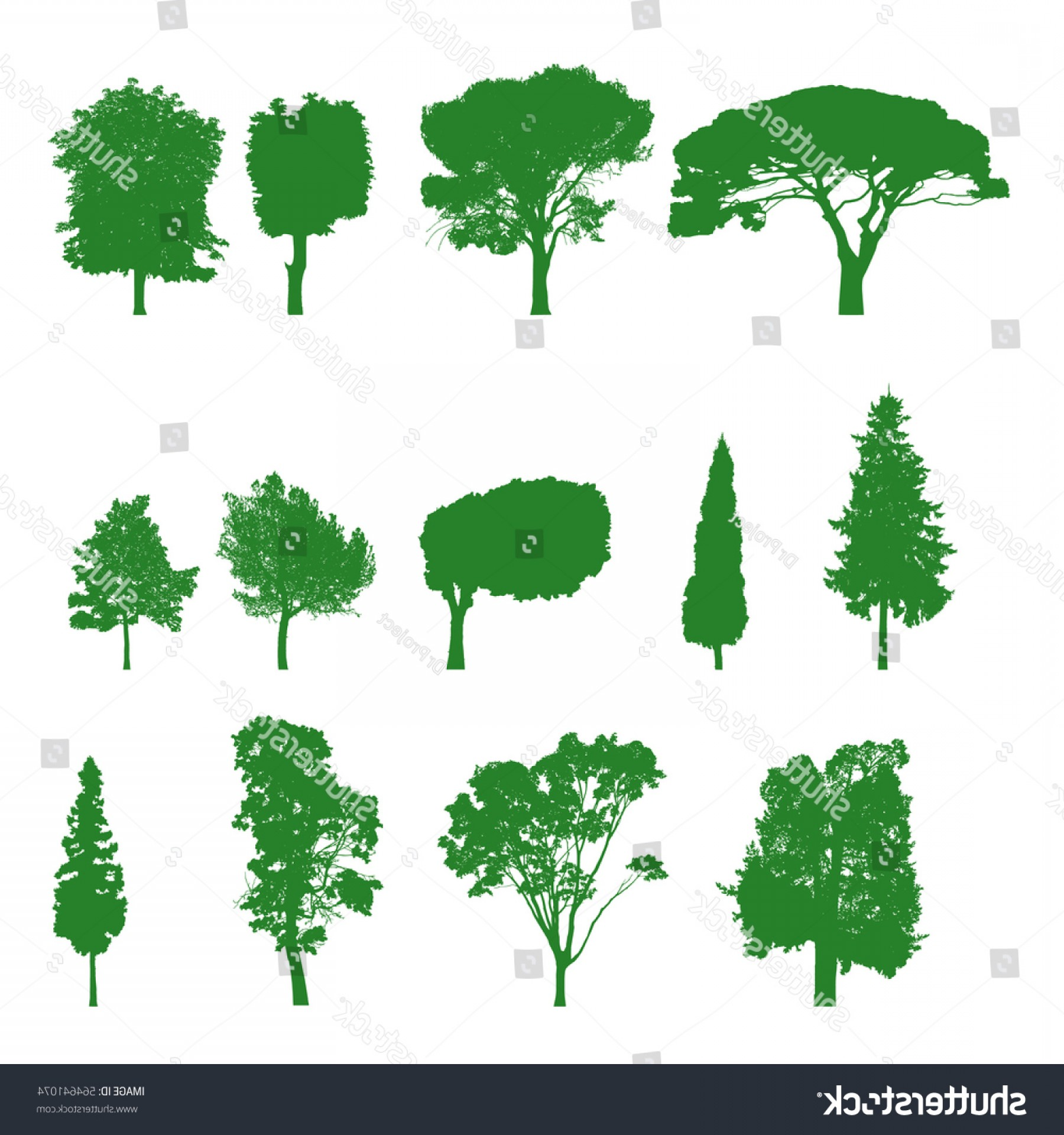 Sapling Vector Tree Silhouette Art: Vector Trees Silhouettes Green Big Set