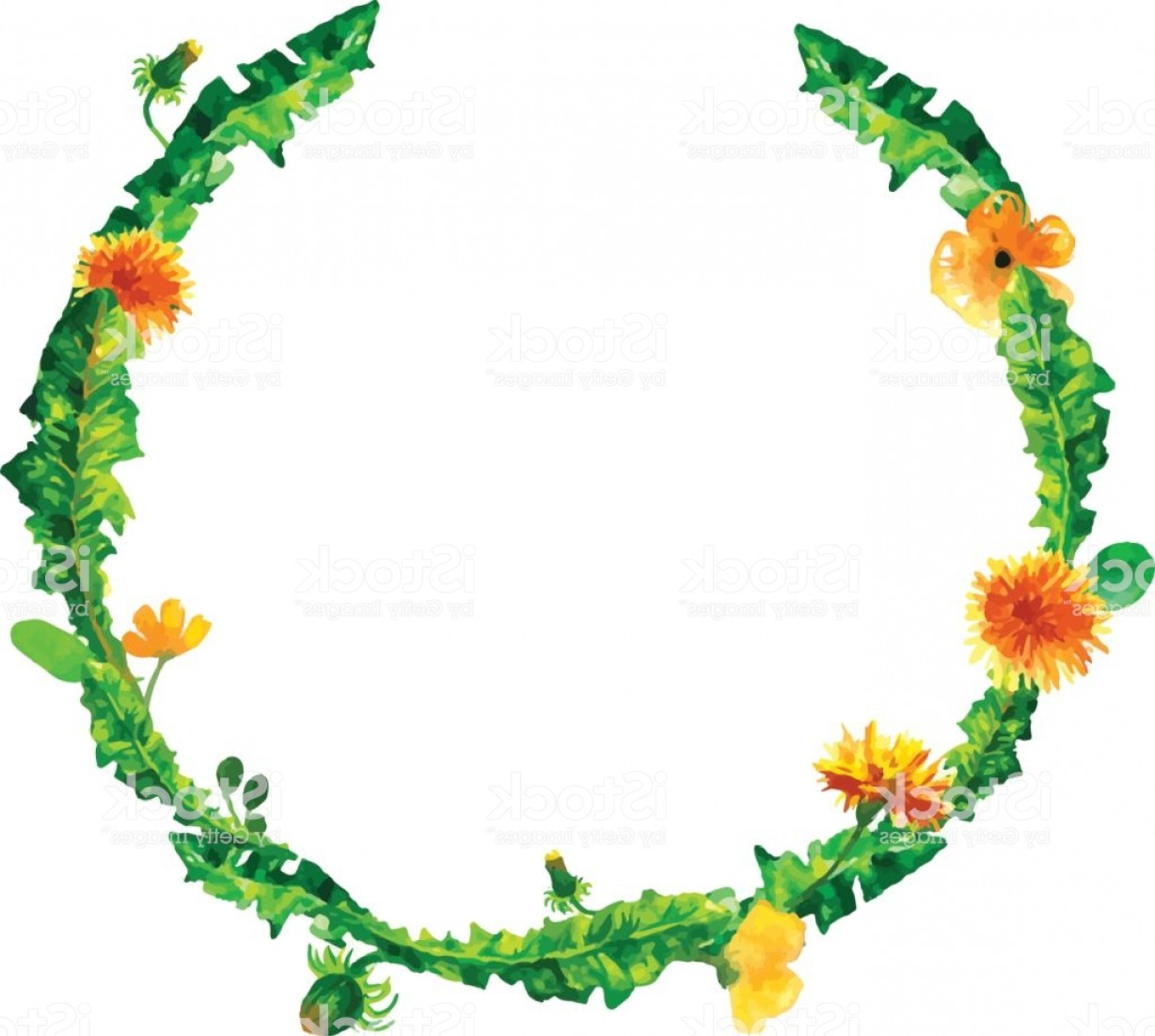 Wreath Circle Logo Vector: Vector Wreath Circle Frame With The Watercolor Flowers Dandelion Fuzzies Hand Drawn Gm