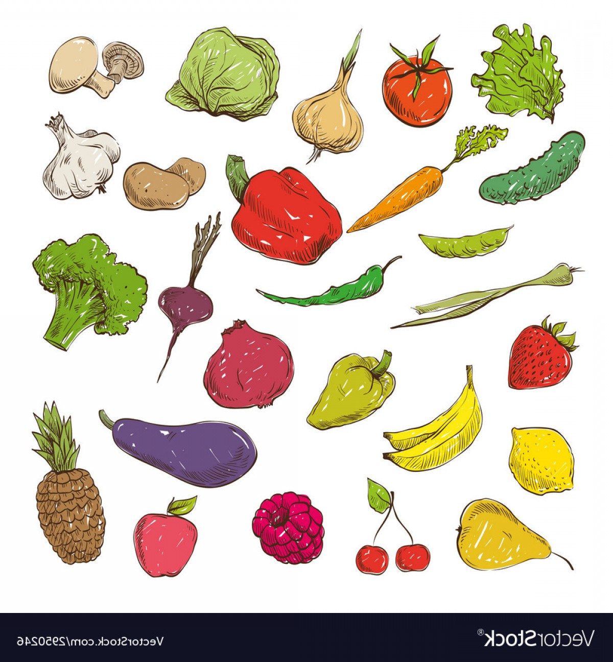 Vector Fruit Vegetable: Vegetables And Fruits Drawing Vector