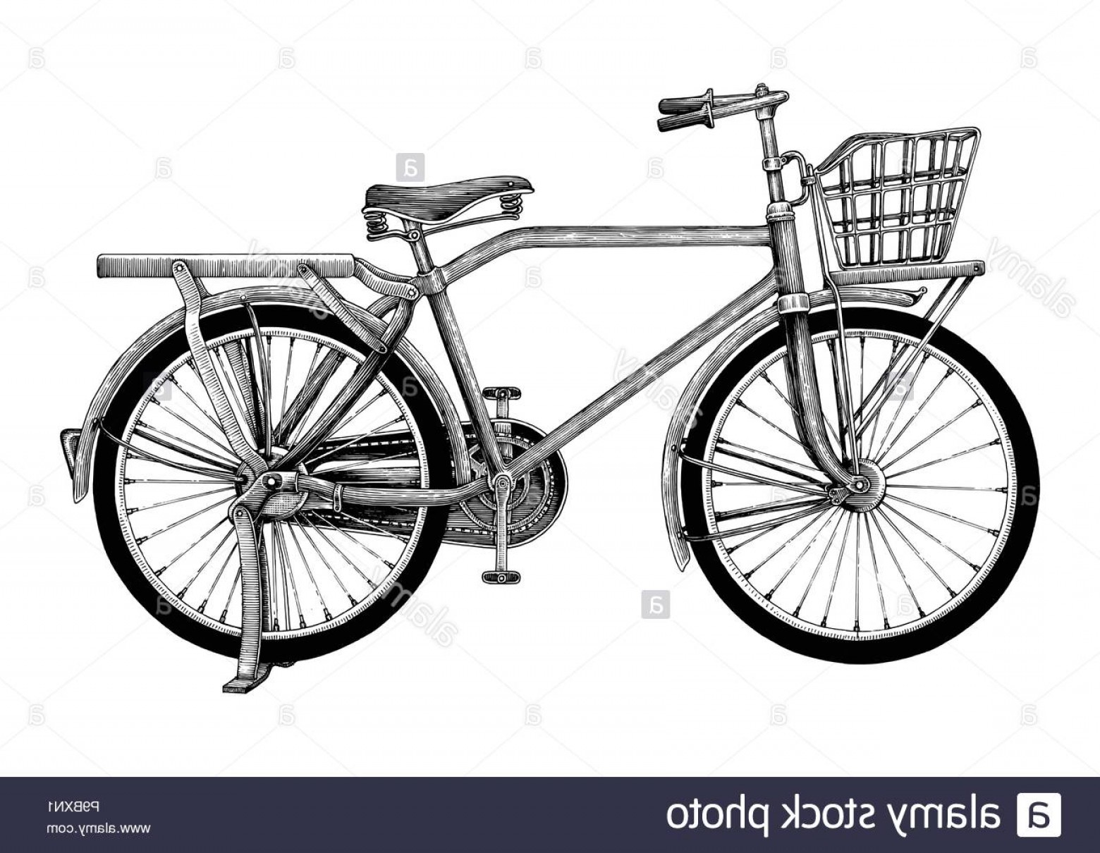 Bicycle Crank Vector Of Artwork: Vintage Bicycle Hand Drawing Clip Art Isolated On White Background Image