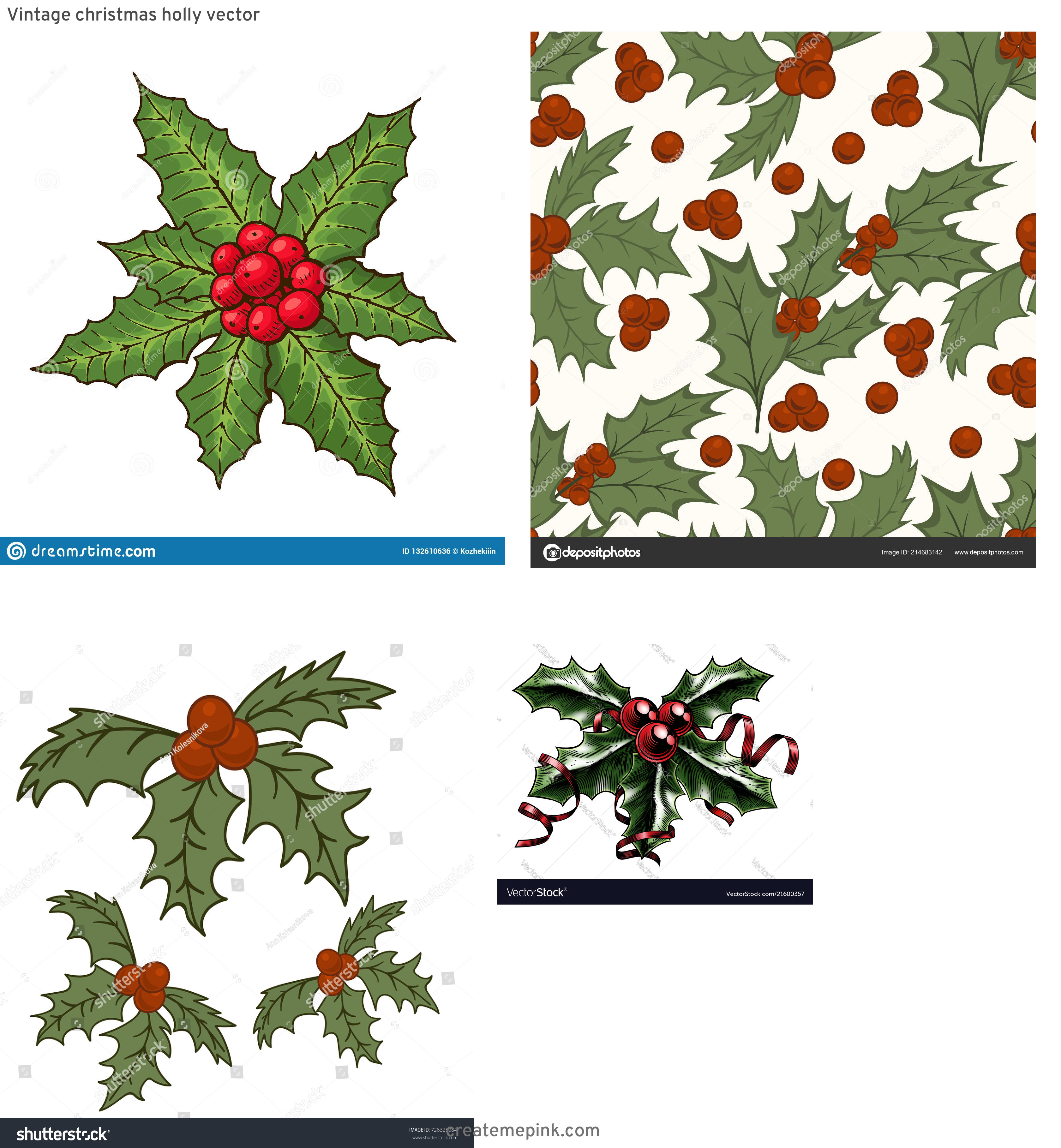 Vintage Look Holly Leaves Vector: Vintage Christmas Holly Vector