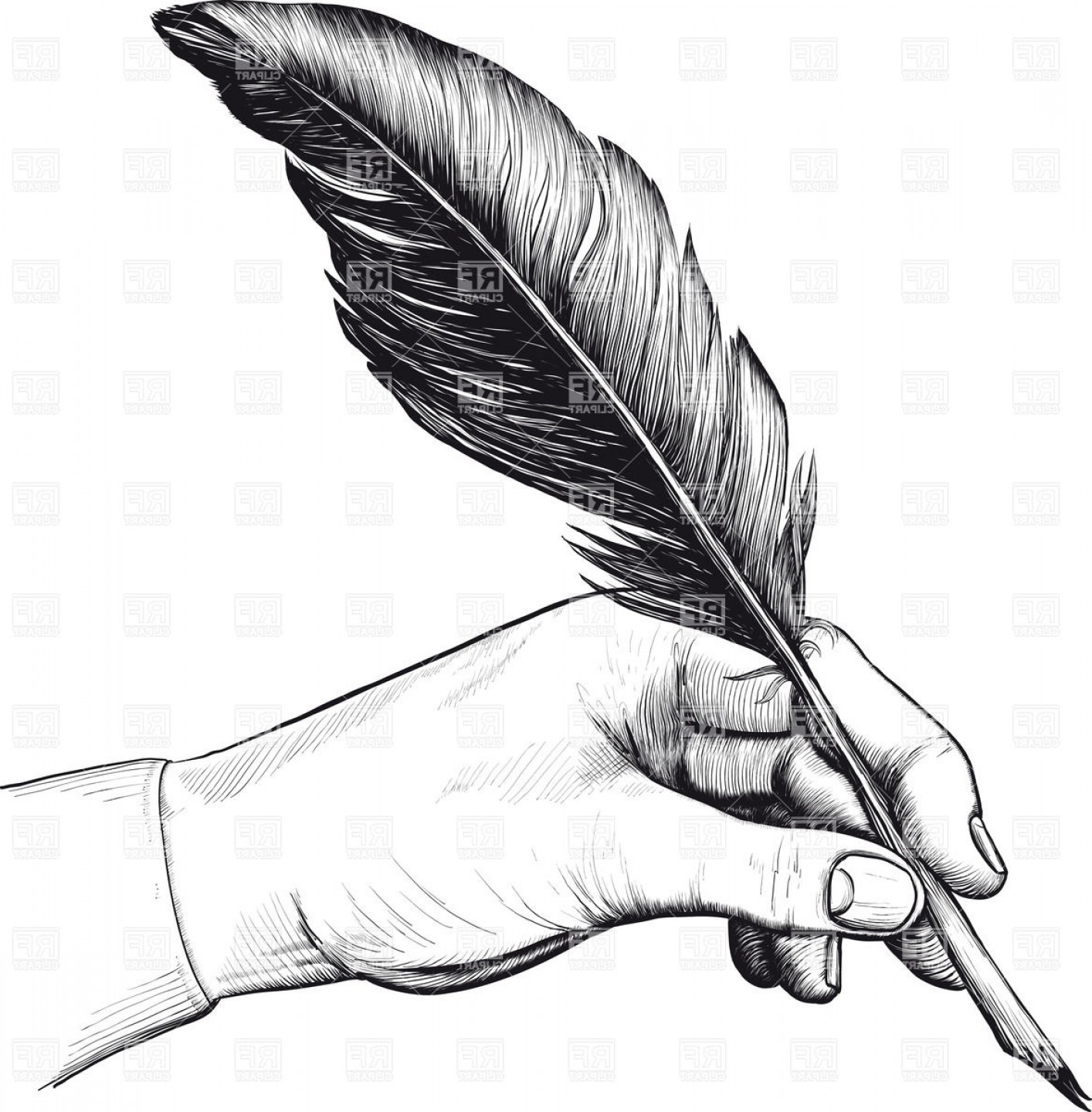 Vector Drawing Feathers: Vintage Drawing Of Hand With A Feather Pen Vector Clipart