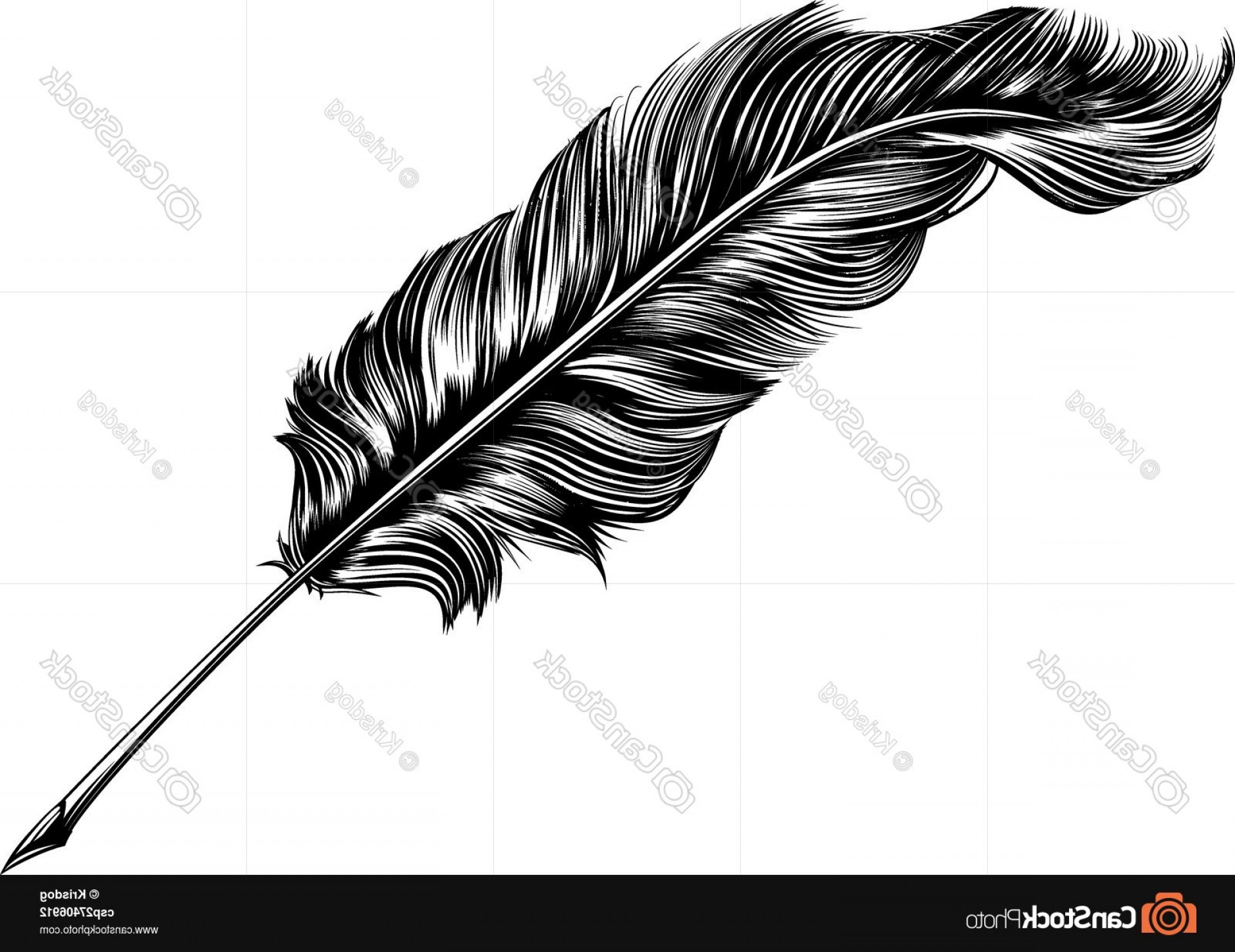 Quill Pen Vector: Vintage Feather Quill Pen Illustration