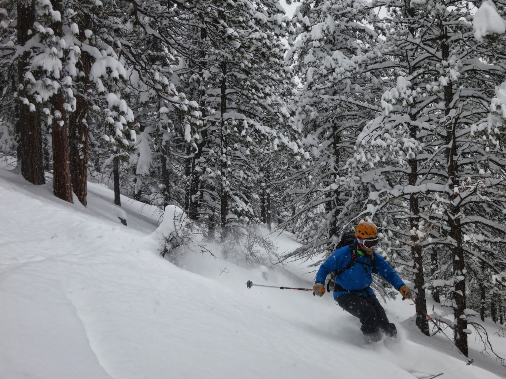 Voile Vector Ski Review: Voile Charger Review Best Value In