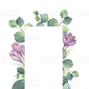 Purple Green And White Vector: Abstract Shape Smoke On White Curves Purple Green Vector