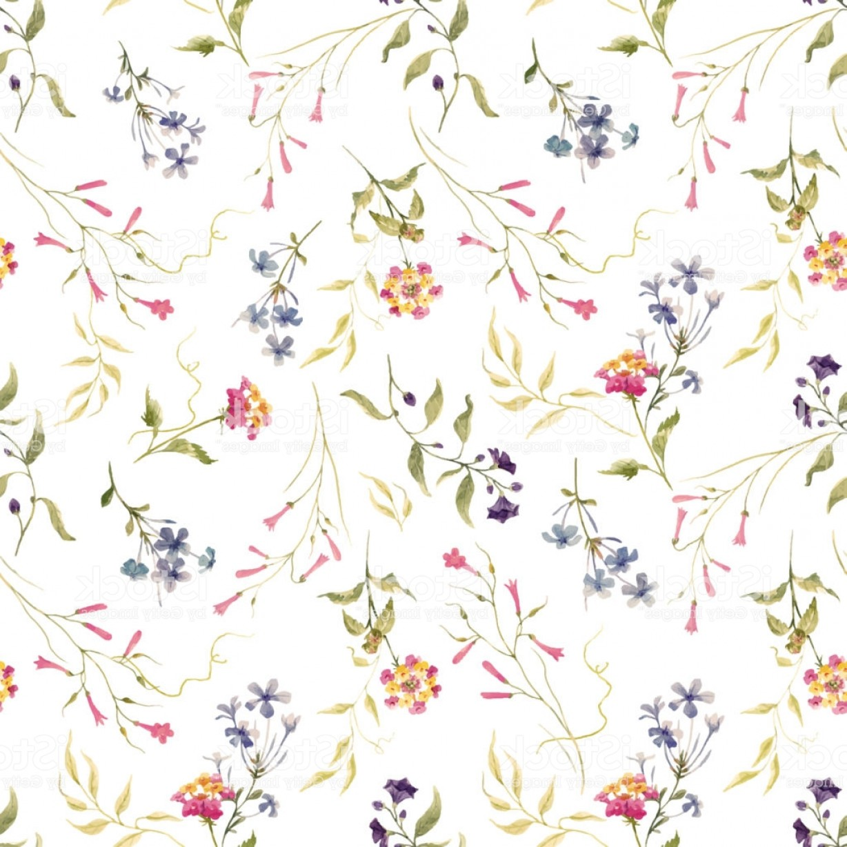Floral Vector Illustration: Watercolor Floral Vector Pattern Gm