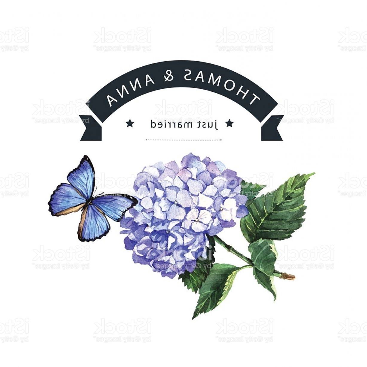 Hydrangea Vector Graphics: Watercolor Invitation With Blue Hydrangea And Butterfly Gm