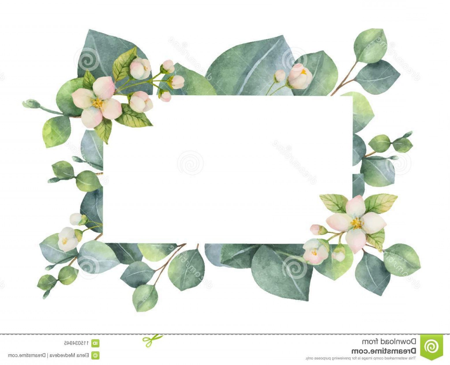 Green Flower Vector Designs: Watercolor Vector Green Floral Card Eucalyptus Leaves Jasmine Flowers Branches Isolated White Background Illustration Image