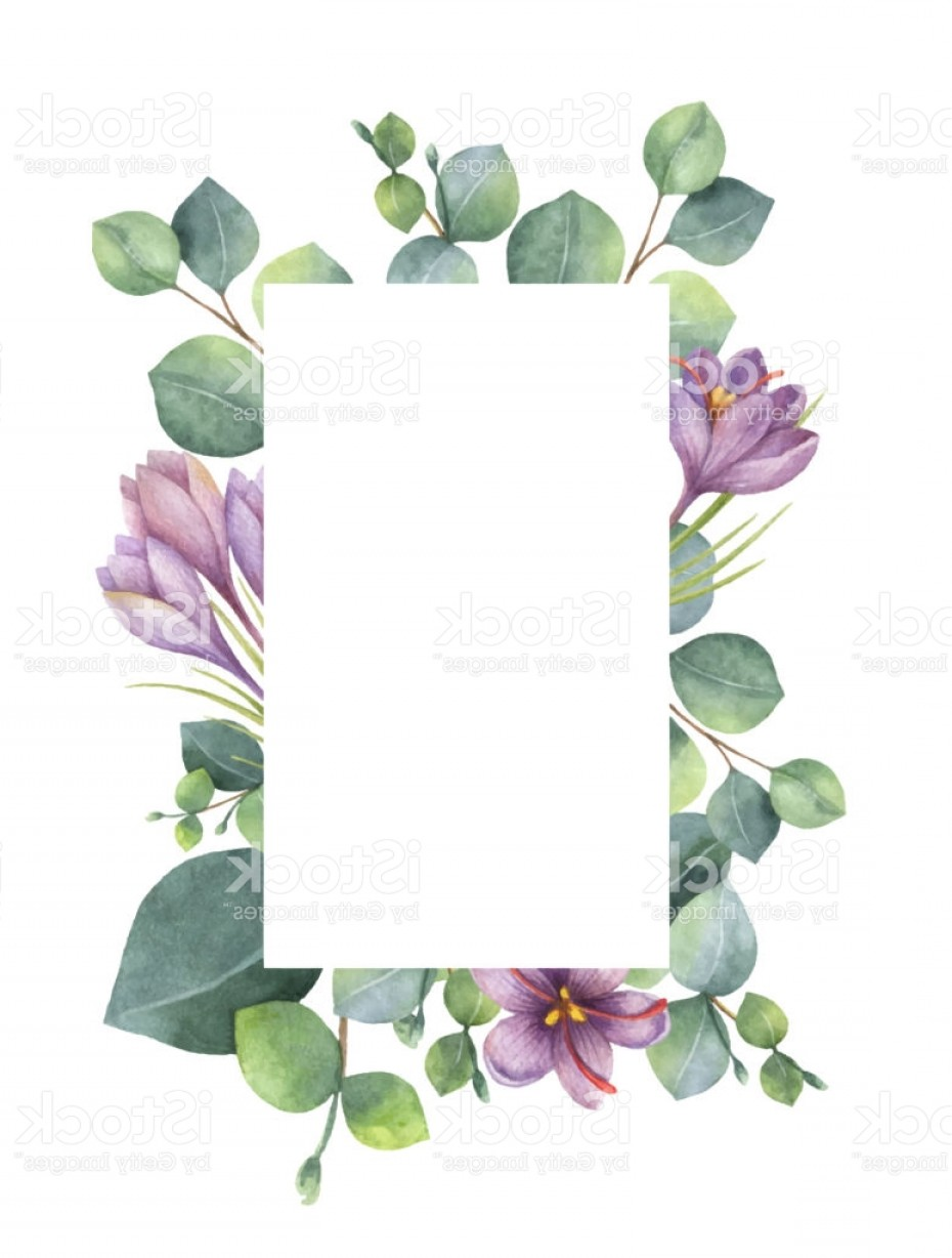 Purple Green And White Vector: Watercolor Vector Green Floral Card With Eucalyptus Leaves Purple Flowers And Gm