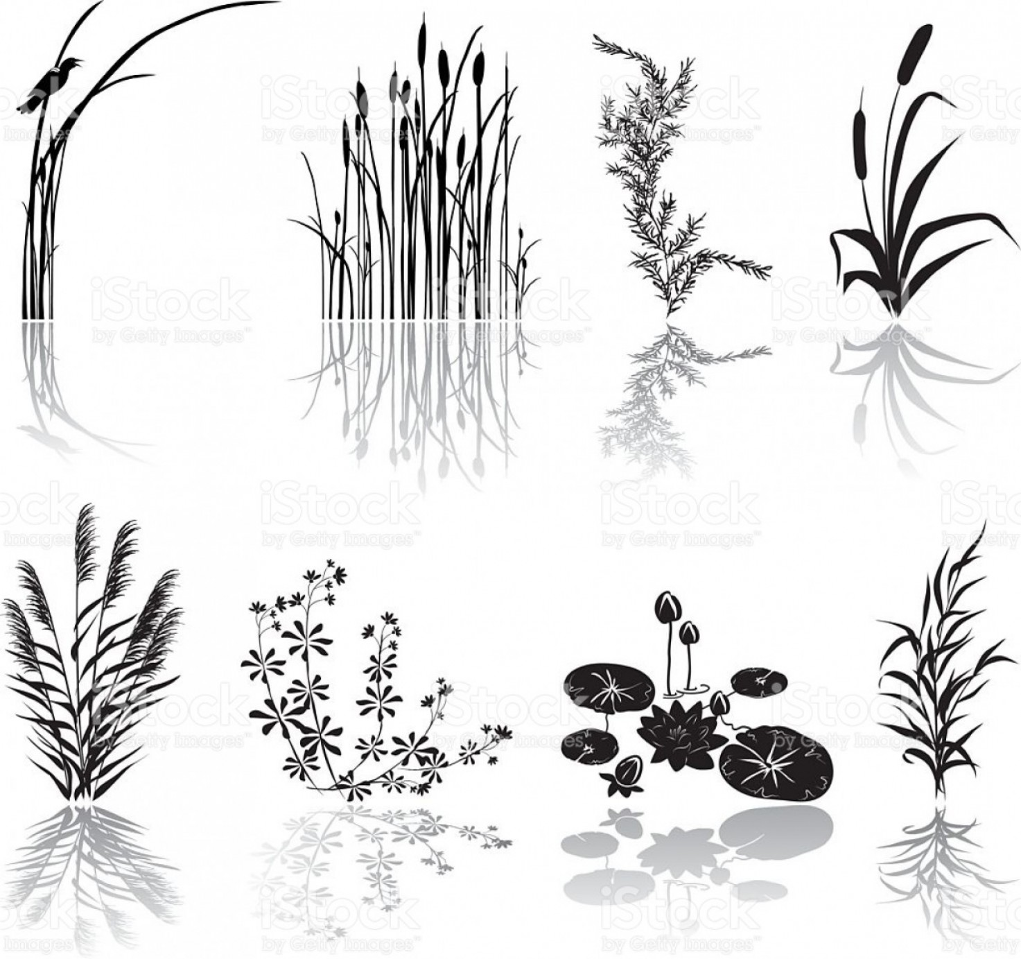 Swamp Vector Art: Wetlands Black Silhouette Icons With Multiple Marsh Elements And Shadows Gm