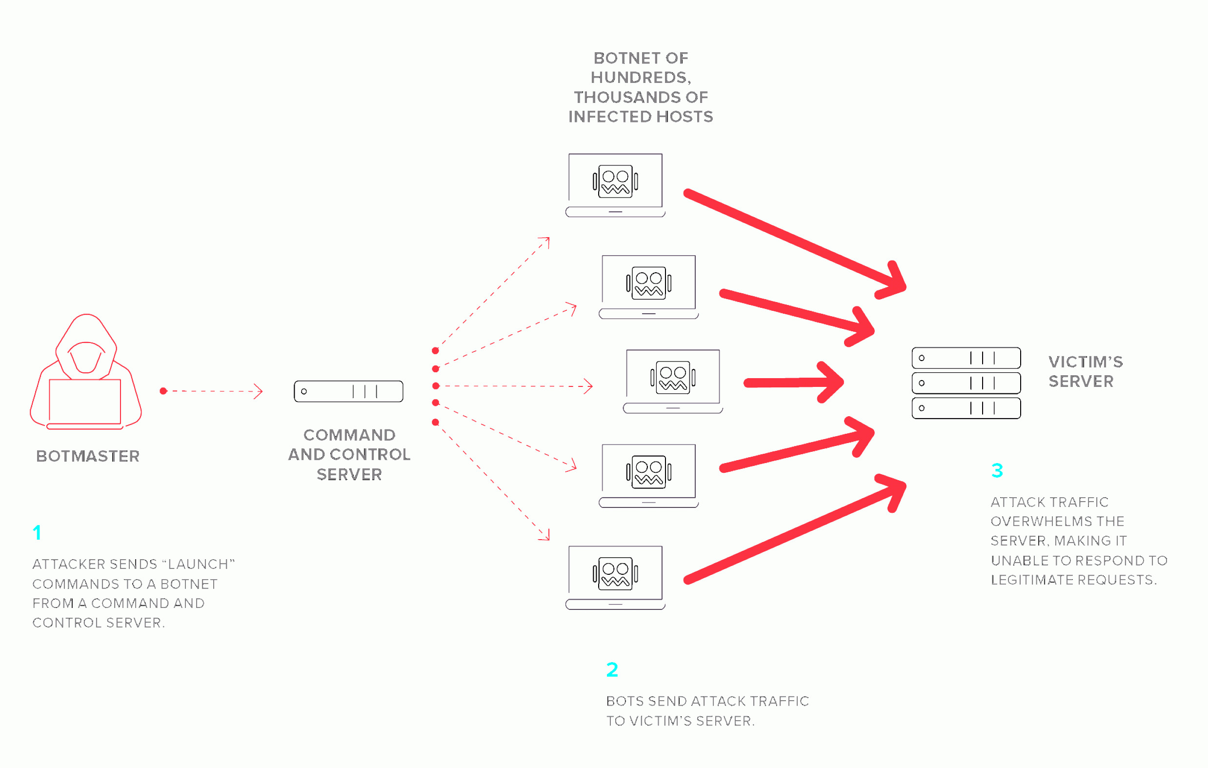 Multi-Vector Attack Plans: What Is A Distributed Denial Of Service Attack