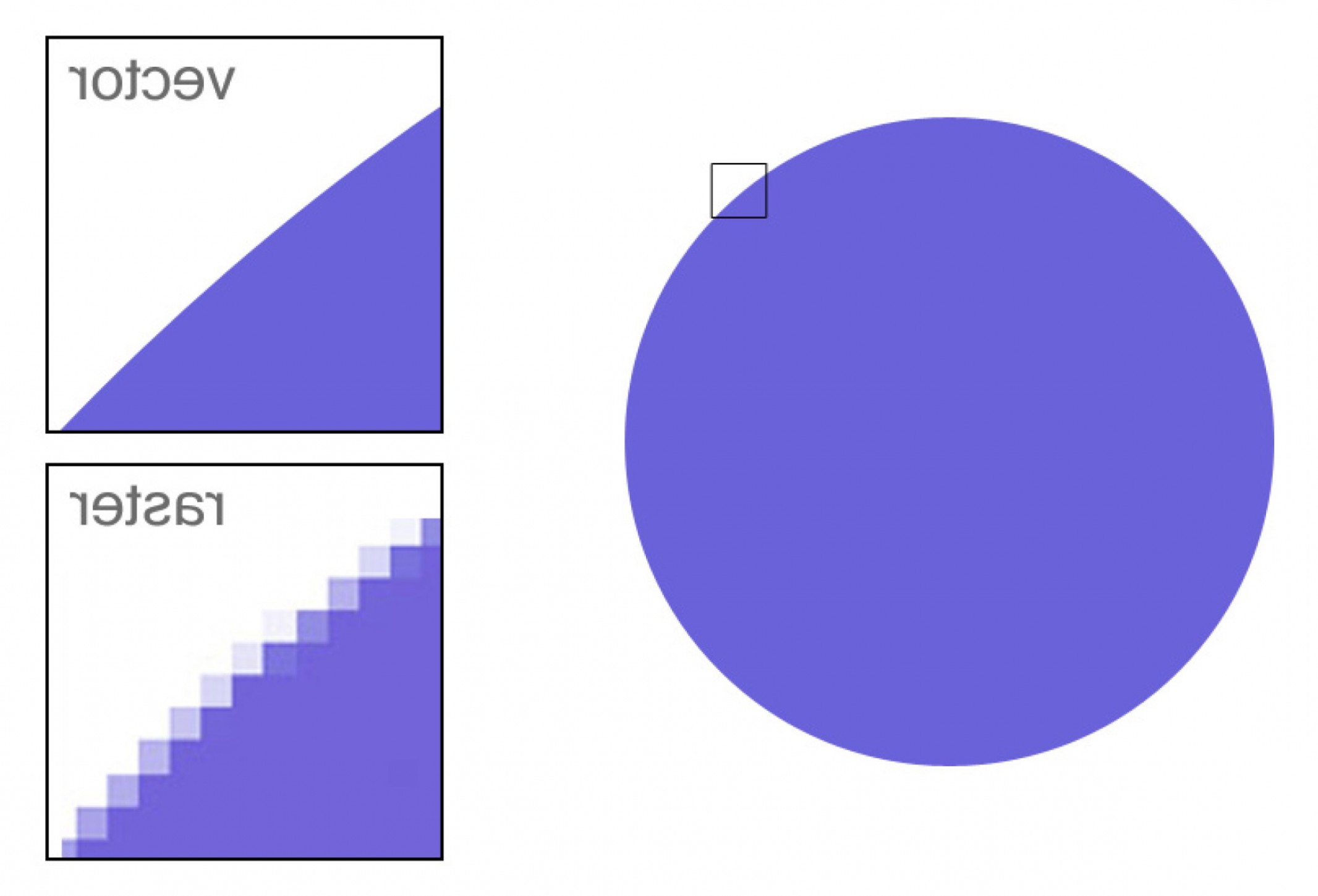 Vector Vs Rastor: What Is The Difference Between Raster And Vector