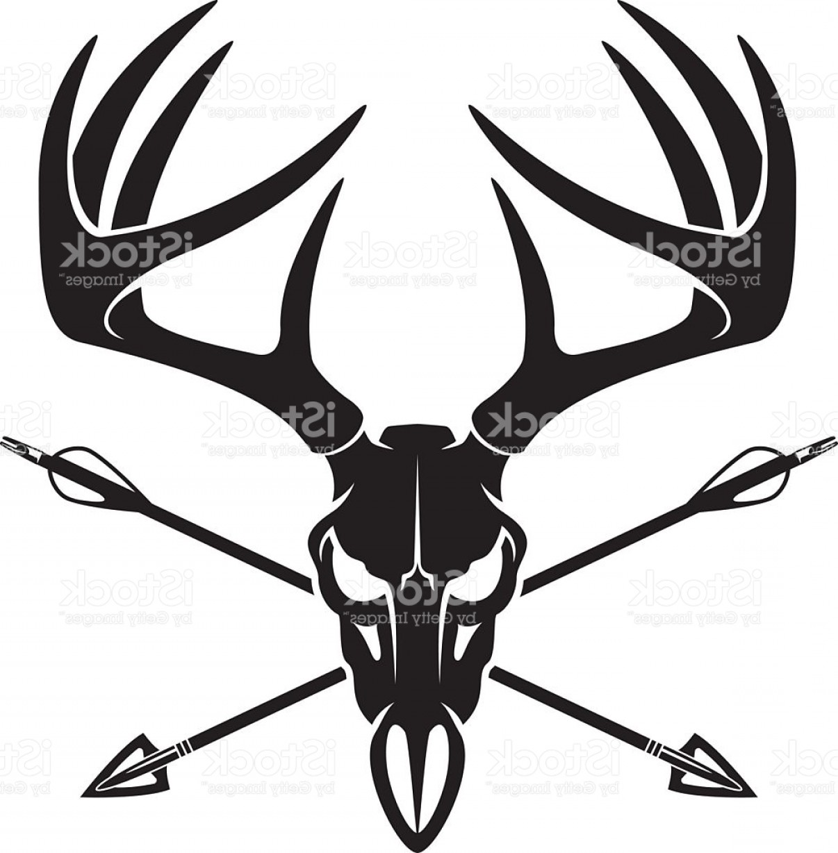 Vector Clip Art Hunting: Whitetail Deer Buck Skull With Crossing Hunting Arrows Gm