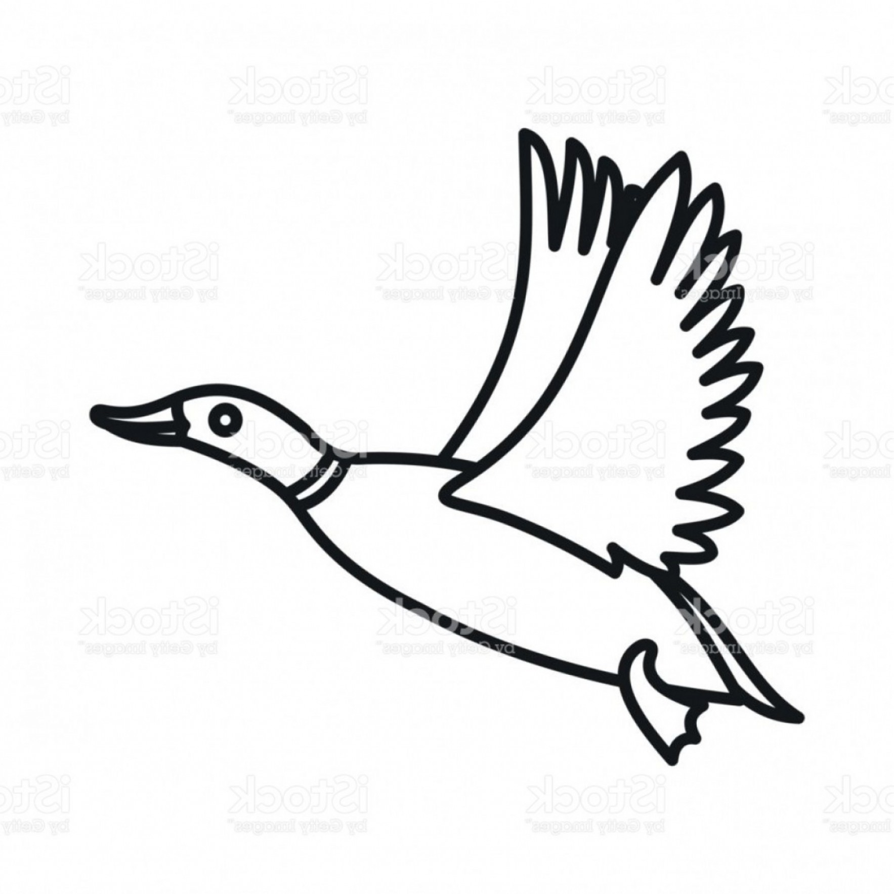 Shot Duck Outline Vector: Wild Duck Icon Outline Style Gm