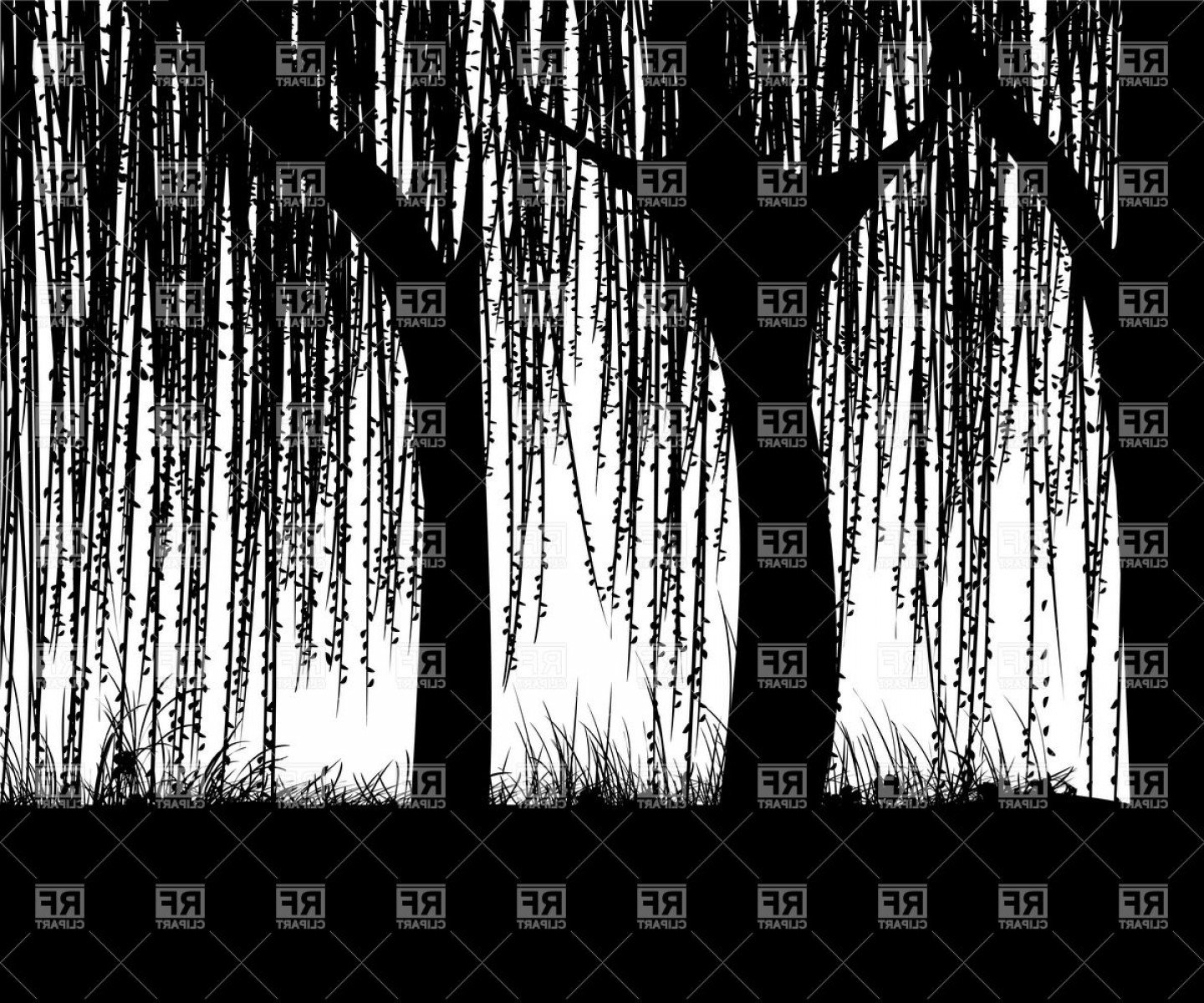 Vector Natural Willow: Willow Tree Silhouette Vector Clipart