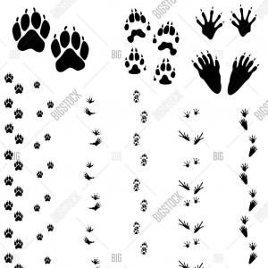 Wolverine Vector Black And White: Wolverine Icon Vector On White Background Wolverine Trendy Filled Icons From Gm