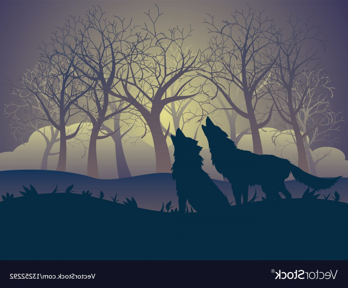 Full Moon Werewolf Vector 900: Wolf Howling In The Night Forest Vector