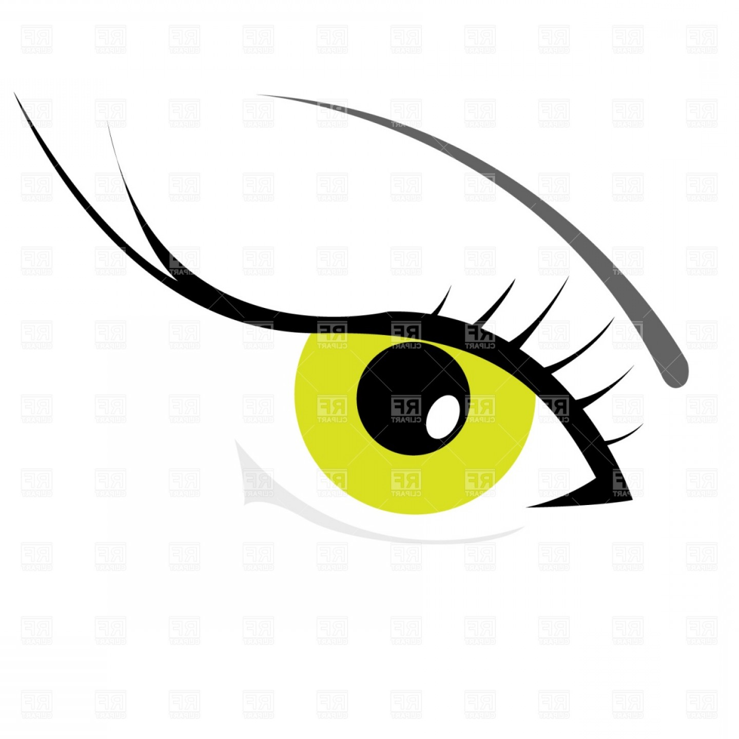 Woman Eye Vector Graphics: Womans Eye With Eyelashes Vector Clipart