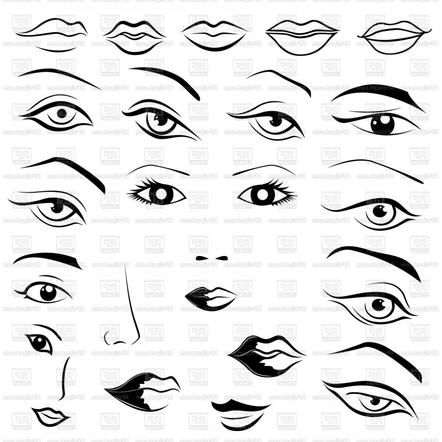 Female Parts Vector: Womans Face Parts Eyes Lips Eyebrows And Noses In Sketching Style Vector Clipart
