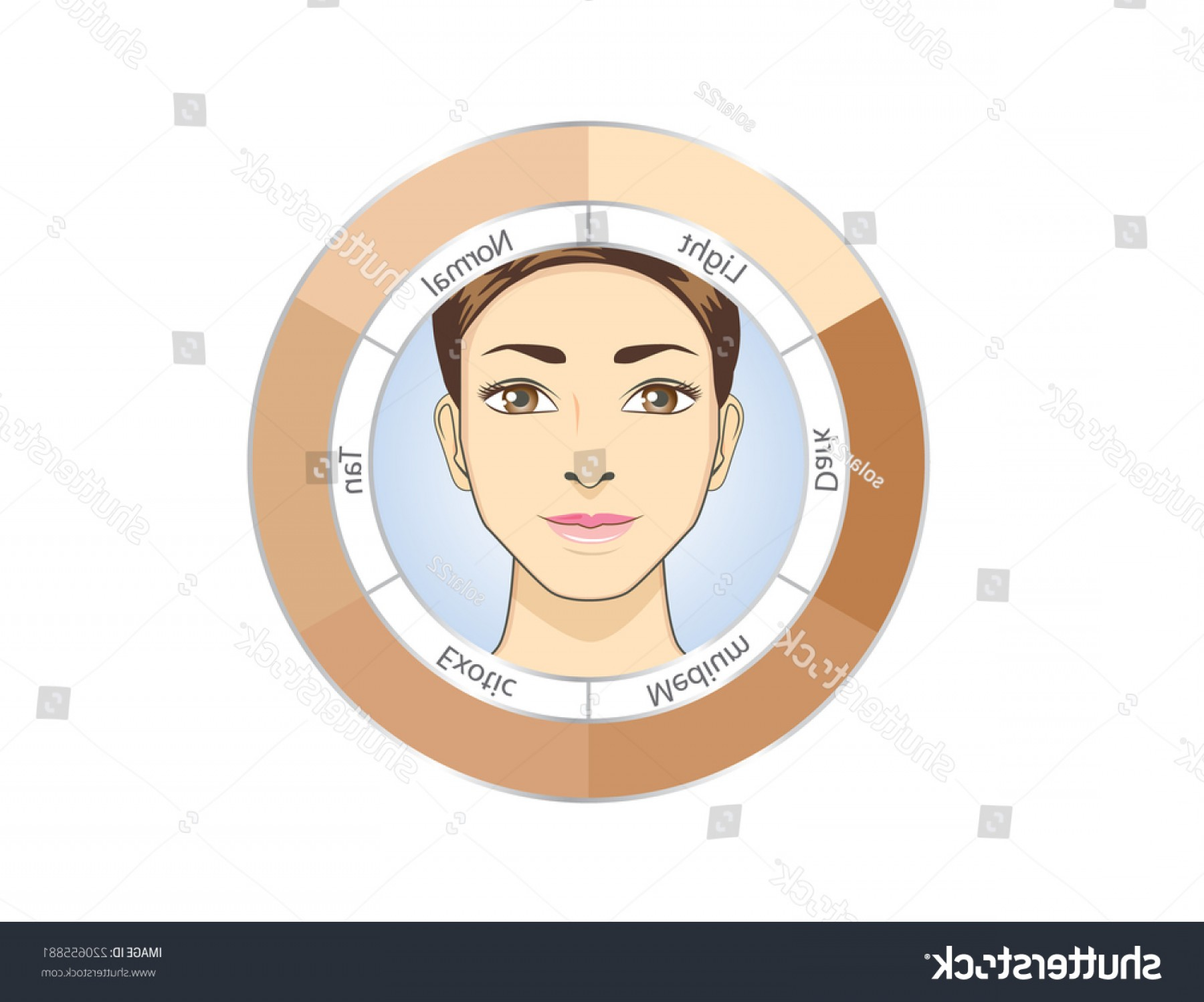 Lady Face Layers Vector: Women Face Circle Skin Chart Check