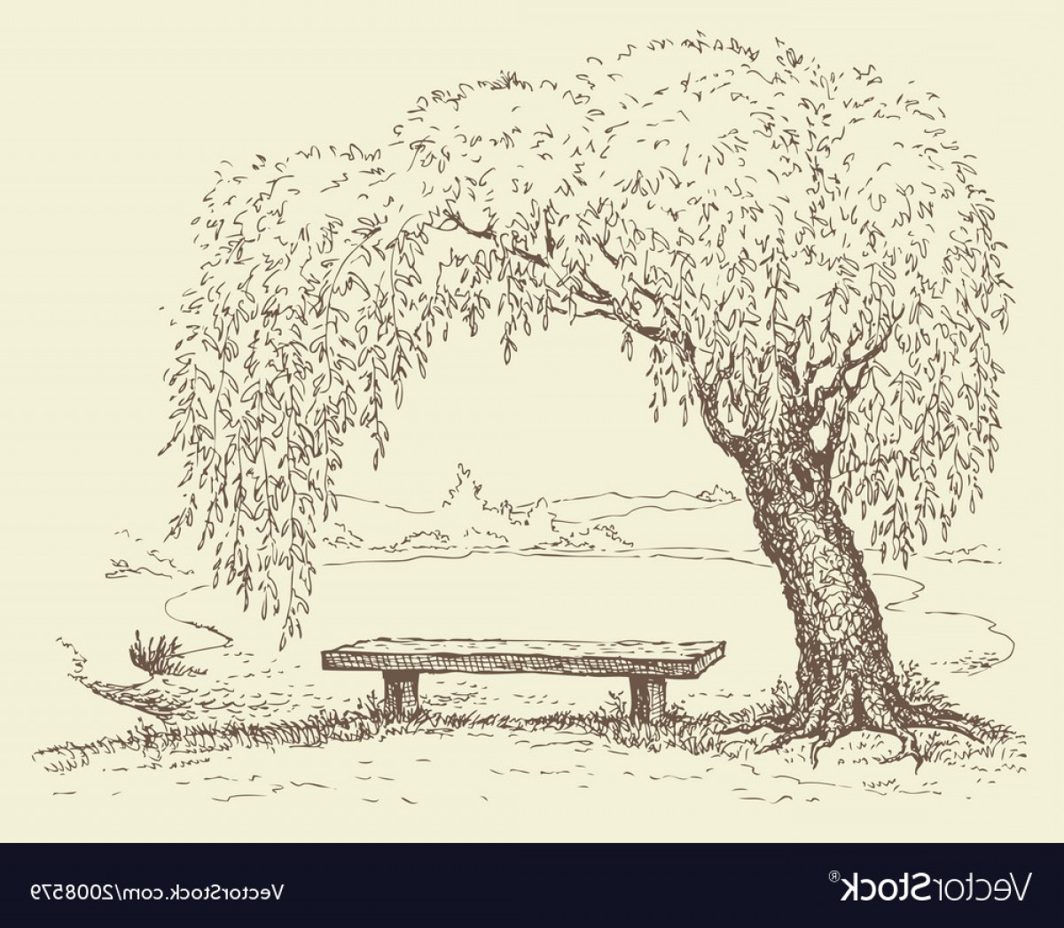 Vector Water Willow: Wooden Bench Under A Willow Tree By The Lake Vector