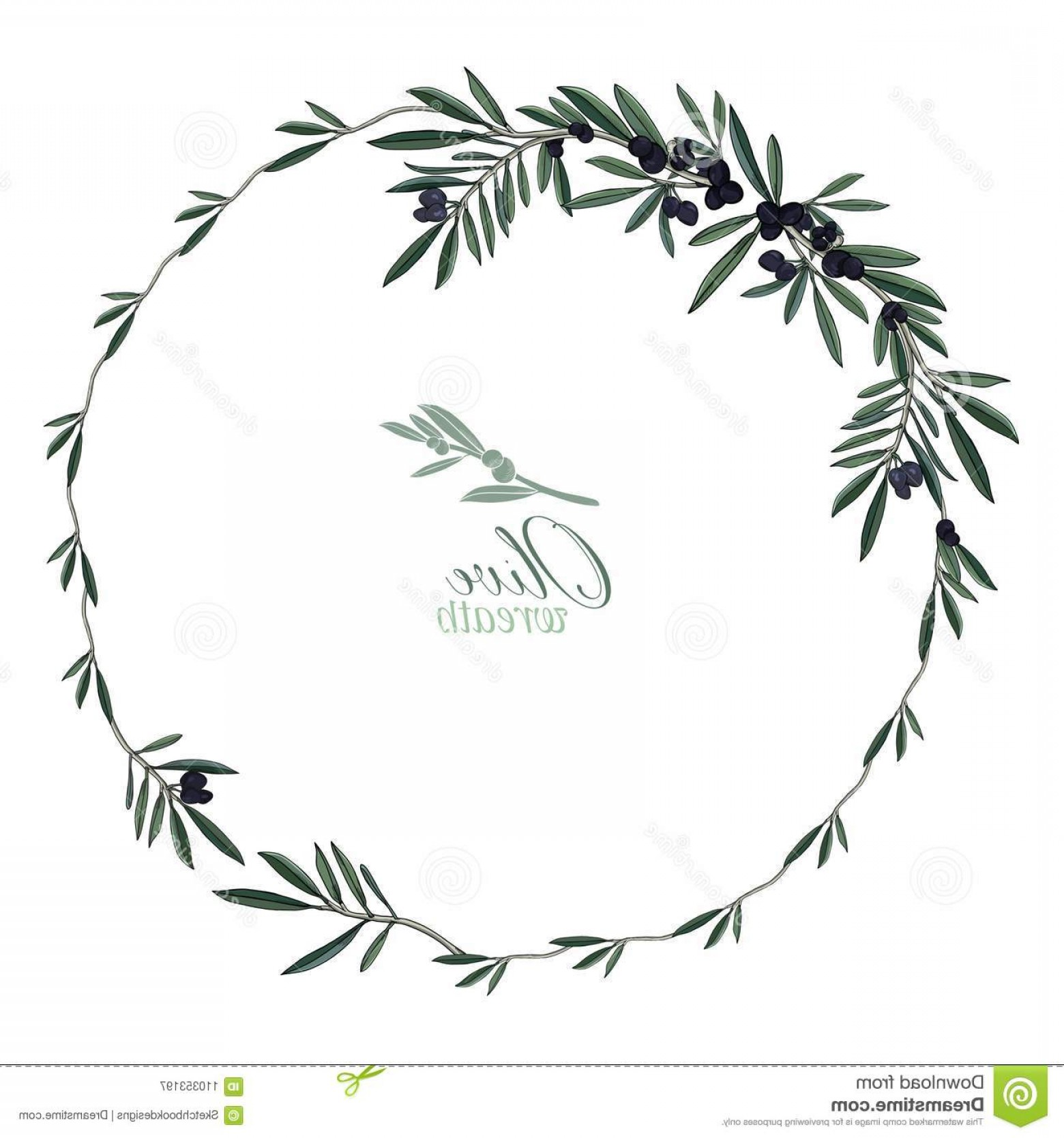 Olive Vector: Wreath Realistic Olives Perfect Weddings Food Design Modern Sketched Olive Vector Set Image