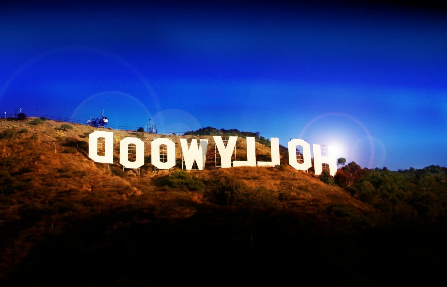 Hollywood Hills Vector: Write Your Name On Hollywood Hills