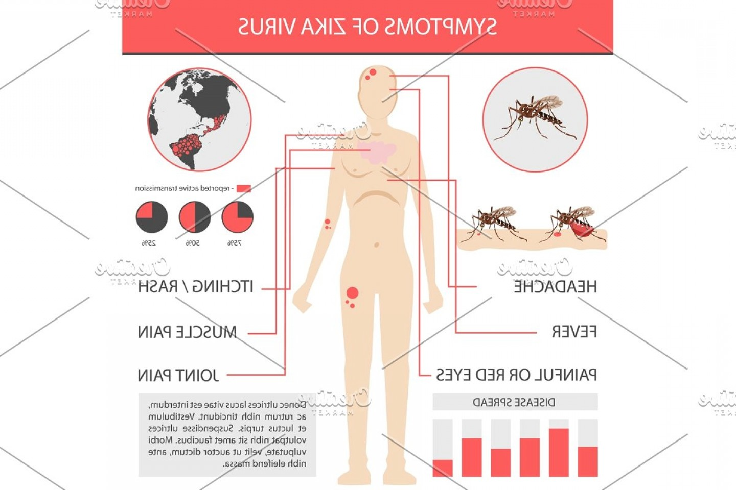 Vector -Borne Transmission Of Disease: Zika Virus Infographics With Transmission Symptom Prevention And Treatment